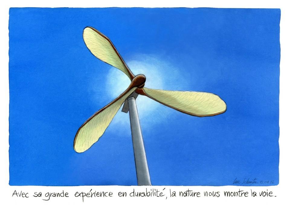 éolienne-érable